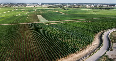 アルマン・ハイツvolnay-vigne-drone-vue-chemin_1728x.jpg