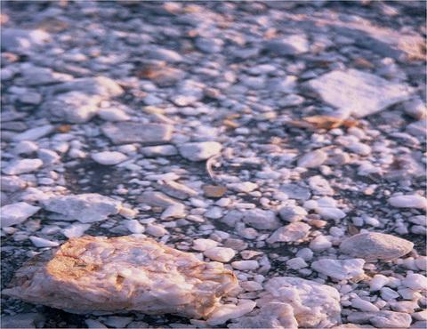 サザンライト 10-Quartzitic-sandstone-topsoi.jpg